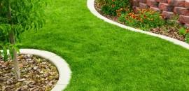Mitchurin - trávnikové hnojivo